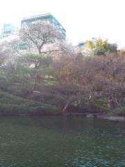 越田みゆ 公式ブログ/お花見。 画像1