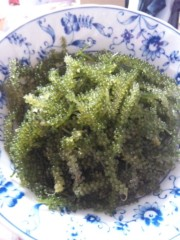 浅居円 公式ブログ/あった!! 画像1