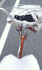 稲富菜穂 公式ブログ/2011-06-17 19:54:13 画像1