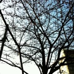 川上裕希 公式ブログ/もうそんな季節ですね。 画像1