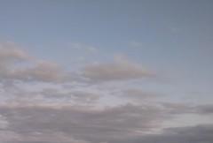 M.Rosemary 公式ブログ/雲1 天国へ行くわんこやにゃんこの雲 画像1