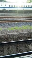 M.Rosemary 公式ブログ/線路の草 画像1