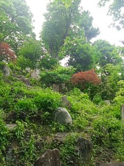 M.Rosemary 公式ブログ/富士塚 画像2