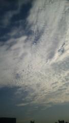 M.Rosemary 公式ブログ/さざれ雲 画像1