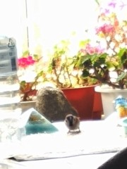 M.Rosemary 公式ブログ/#発達障イコール事件の因果関係じゃない。  画像1