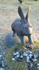 M.Rosemary 公式ブログ/幸福ウサギだよ〜(^0^)/ 画像1