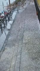 M.Rosemary 公式ブログ/花散らしの雨 画像1