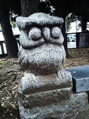 M.Rosemary 公式ブログ/雑司ヶ谷、鬼子母神さんのすすきミミズク 画像3