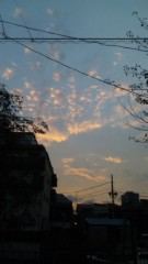 M.Rosemary 公式ブログ/夕焼け 画像1