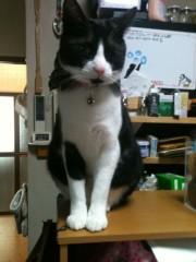 M.Rosemary 公式ブログ/九州に住んでる チビちゃん 画像1