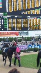 M.Rosemary 公式ブログ/しまいの競馬 画像1