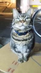 M.Rosemary 公式ブログ/こんなにかわいい顔で 画像1