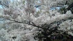 M.Rosemary 公式ブログ/地震で 画像1