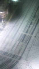 M.Rosemary 公式ブログ/わ〜い、雪! 画像1