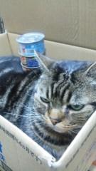M.Rosemary 公式ブログ/缶乗せに挑戦 画像1