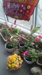 M.Rosemary 公式ブログ/お誕生日にわんこたちからいただいた花かご 画像1