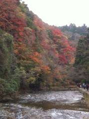 鬼塚忠 公式ブログ/紅葉狩り、でもなぜ狩るの? 画像1