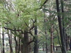 鬼塚忠 公式ブログ/春 画像3