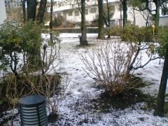 鬼塚忠 公式ブログ/雪が降った。 画像1