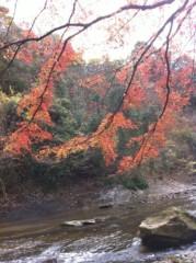 鬼塚忠 公式ブログ/紅葉狩り、でもなぜ狩るの? 画像2