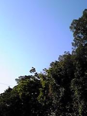 新生かな子 公式ブログ/いい天気☆ 画像1