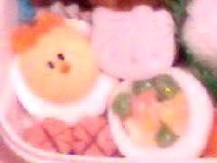 新生かな子 公式ブログ/今日のお弁当は。。。☆彡 画像2
