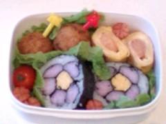 新生かな子 公式ブログ/お弁当特集 画像2