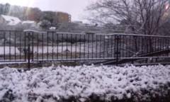 新生かな子 公式ブログ/雪景色.*゜ 画像2