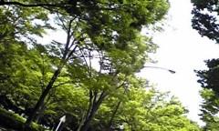 新生かな子 公式ブログ/自然がいっぱい 画像2