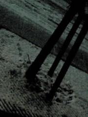 新生かな子 公式ブログ/雪だ〜!!*゜ 画像1