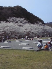 新生かな子 公式ブログ/お花見 画像1