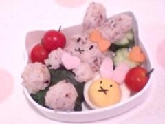 新生かな子 公式ブログ/キャラ弁 画像3