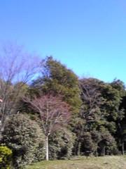新生かな子 公式ブログ/本日モ晴天ナリ。 画像2