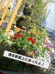 新生かな子 公式ブログ/お返事� 画像1