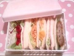 新生かな子 公式ブログ/昨日のお弁当 画像1