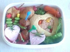 新生かな子 公式ブログ/お弁当アイドル 画像2