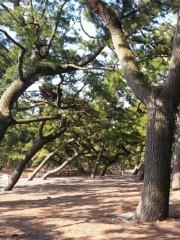 松本えいじ 公式ブログ/今年一発目の絶景場所は、 画像2
