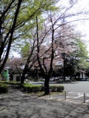 下村奈緒子 公式ブログ/小金井公園ロケ 画像1