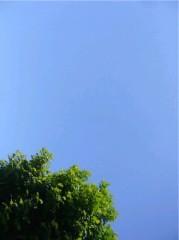 黒田和沙 公式ブログ/青空… 画像1