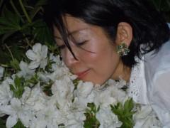 石川恵深 公式ブログ/お庭の☆白いつつじ☆を見て(*^_^*) 画像3
