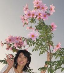 石川恵深 公式ブログ/恵深チャンちの皇帝ダリア & エミコメ!(^^)! 画像3