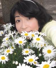 石川恵深 公式ブログ/明日!恵深テレビ出演☆CBC「ゴゴスマ」&お庭のマーガレット 画像2