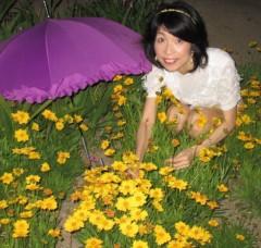 石川恵深 公式ブログ/恵深チャンちのキンケイギク(金鶏菊) &エミコメ!(^^)! 画像1