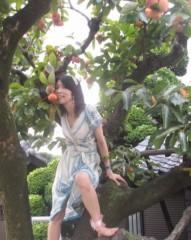 石川恵深 公式ブログ/おはよ〜♪ 柿 画像2