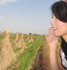 石川恵深 公式ブログ/田んぼ&稲わら 画像1