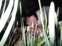 石川恵深 公式ブログ/恵深チャンちのお庭のつくし 画像3