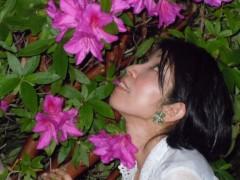 石川恵深 公式ブログ/ピンクつつじ☆を見て・・・オヤスミ☆彡 画像2