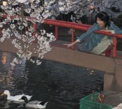 石川恵深 公式ブログ/桜祭りへ行ったぁ(^^) 画像1