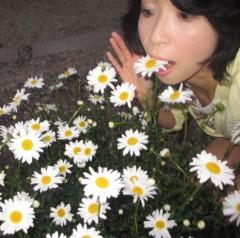 石川恵深 公式ブログ/明日!恵深テレビ出演☆CBC「ゴゴスマ」&お庭のマーガレット 画像1