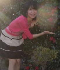石川恵深 公式ブログ/恵深チャンのお庭のサザンカに…(*^_^*) 画像2